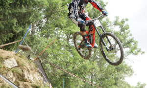 Downhill - Freeride
